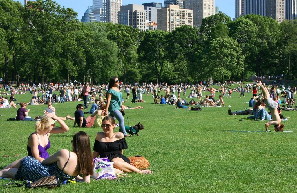 L'ambiance rappel le Vondelpark en été à Amsterdam (sans l'odeur de l'herbe...)