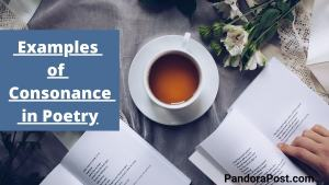 Definition & Examples of Consonance in Poetry
