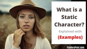 Read more about the article Static Character Examples in Literature
