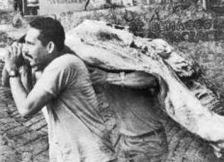 Persona cargando una res durante los saqueos
