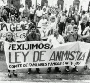 Dario-Vivas-Amnistia
