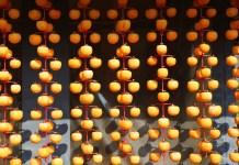 dried-persimmon-anpogaki-jepang