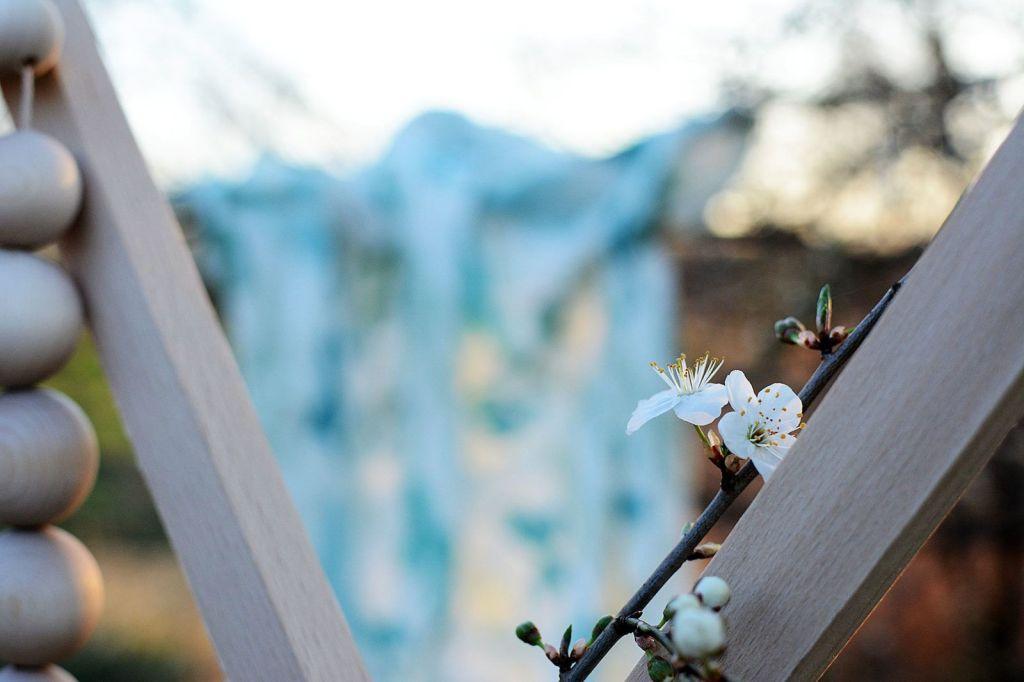 Tula otulacz kaktusy sunbear wiskoza bambusowa