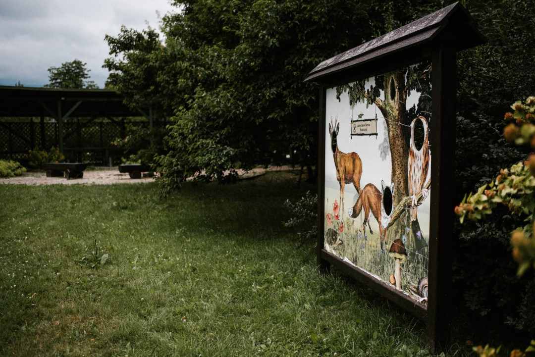 Leśny Bank Genów w Kostrzycy