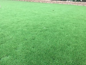 bad-artificial-turf-installation