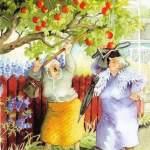 Fruktkoll? Hitta äpplen, päron, körsbär och plommon!