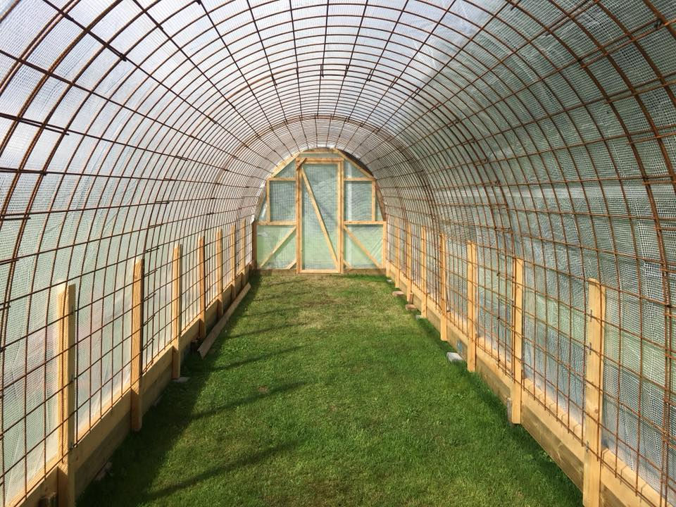 odla i tunnel