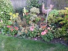 32. Garden