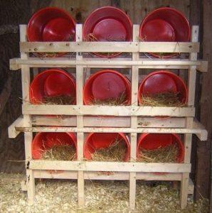 breeding box