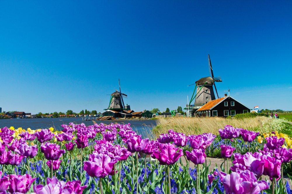 Zaanse Schans meta ideale per un viaggio di nozze in Olanda