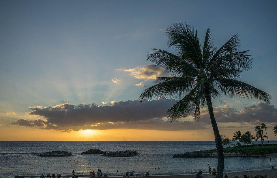 Viaggio di nozze alla scopeta delle Hawaii