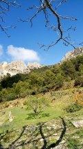 Valle que sube al Monte Cabal y al Sanxet