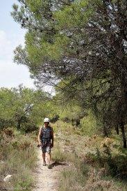Fer de camino al barranco de Soler