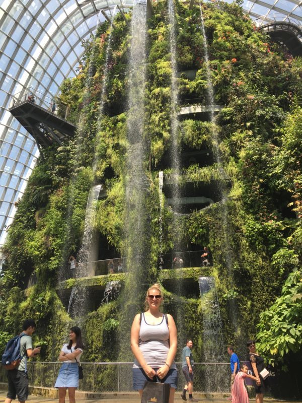 cloud forest, singapour, escapade, garden by the bay