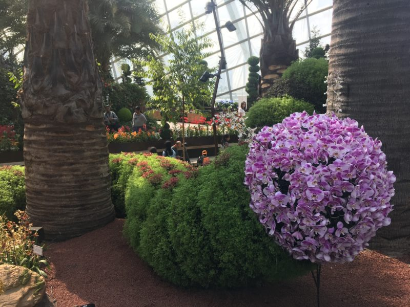 flower dome, escapade, singapour, garden by the bay