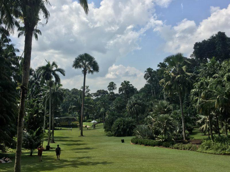 singapour, jardin botanique, escapade