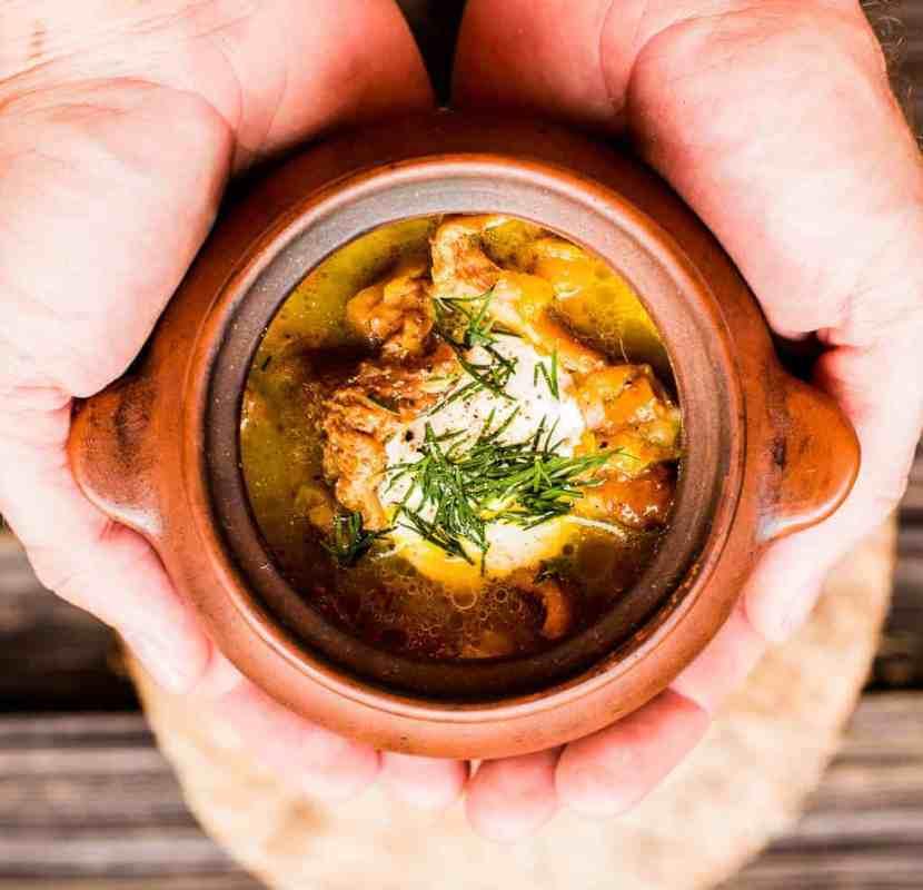 fox mushroom soup