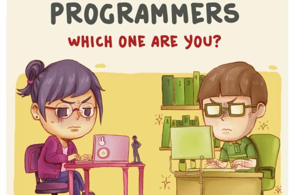 11 tipi di programmatori