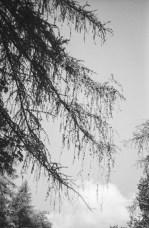 paolodurandettoart-cadescenza-6