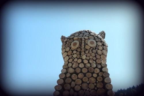 Trono Gufo. Land Art. Melere Trichiana anno 2013