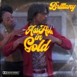 "H-TOWN'S A**HOLE IN GOLD DROPS VISUAL FOR ""BRITTANY"" @AssHole_in_Gold"