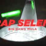 Big Dawg Mula -Trap Selena | @bigdawgmula