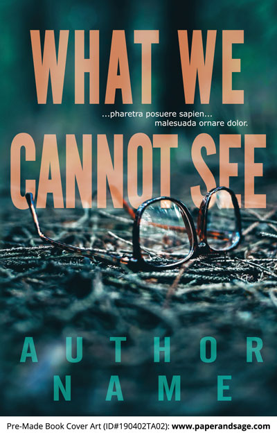 Pre-Made Book Cover ID#190402TA02 (What We Cannot See)