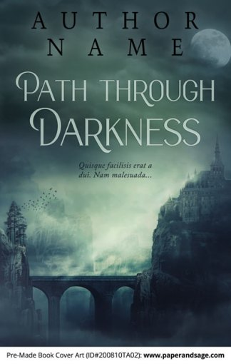 Pre-Made Book Cover ID#200810TA02 (Path Through Darkness)