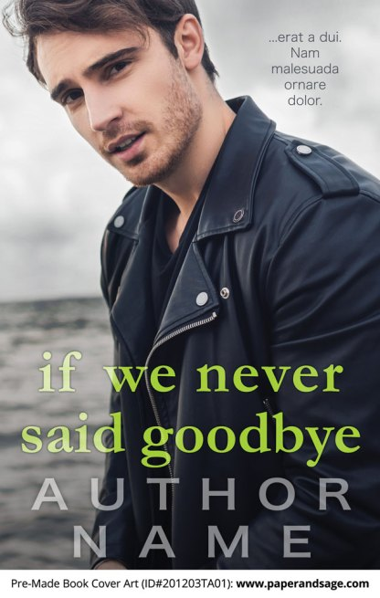 Pre-Made Book Cover ID#201203TA01 (If We Never Said Goodbye)