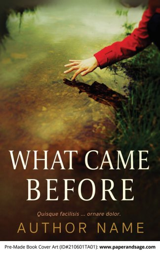 Pre-Made Book Cover ID#210601TA01 (What Came Before)