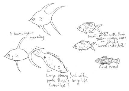 Reef fish 2