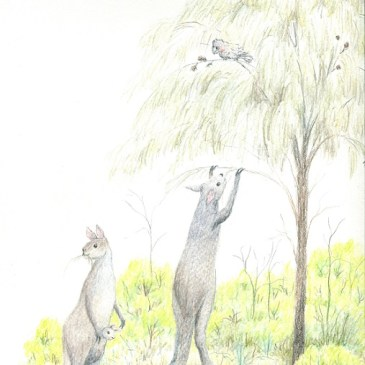 Walk like a man: Was the giant kangaroo too big to hop?