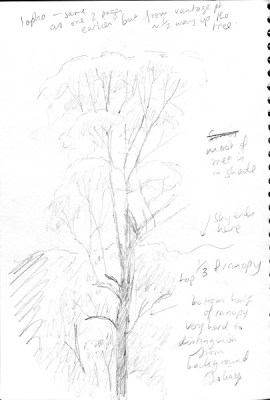 flooded gum notes004 small