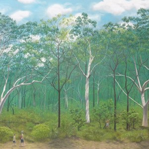 Scribbly gum woodland, south east Queensland – Greeting card