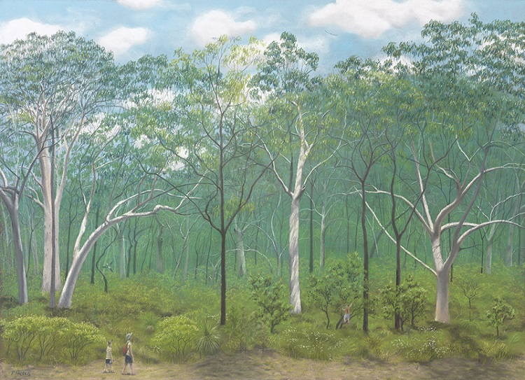 Dry sclerophyll forest - scribbly gums at Beerwah (pastel)