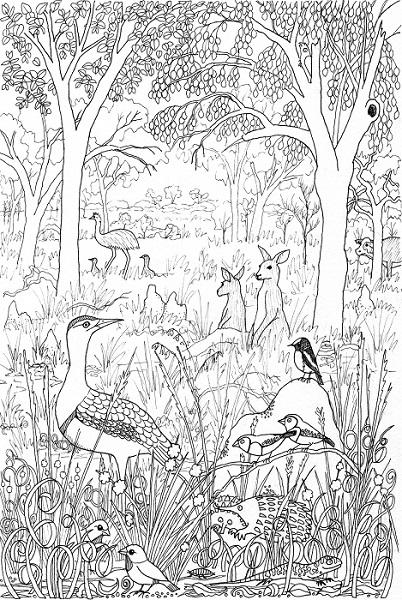 Bimblebox Wonderland - woodland scenecrop