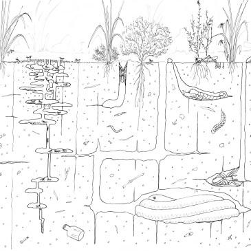 How to draw a grassland Part 3: What lies beneath?