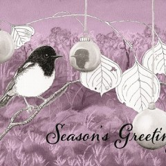 Hooded Robin and Bimblebox Christmas card