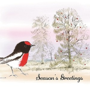 Red-capped Robin and White Cypress-pine Christmas card