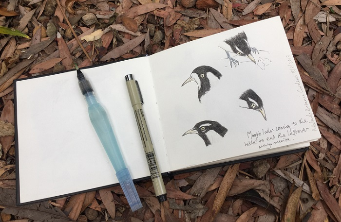 Free Nature Journaling workshops this Sunday in Brisbane