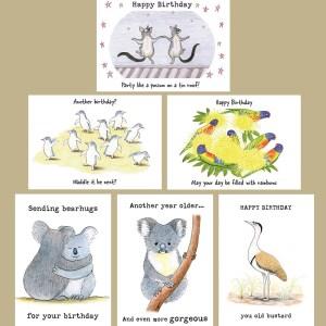 Set of 6 Wild.Life birthday cards