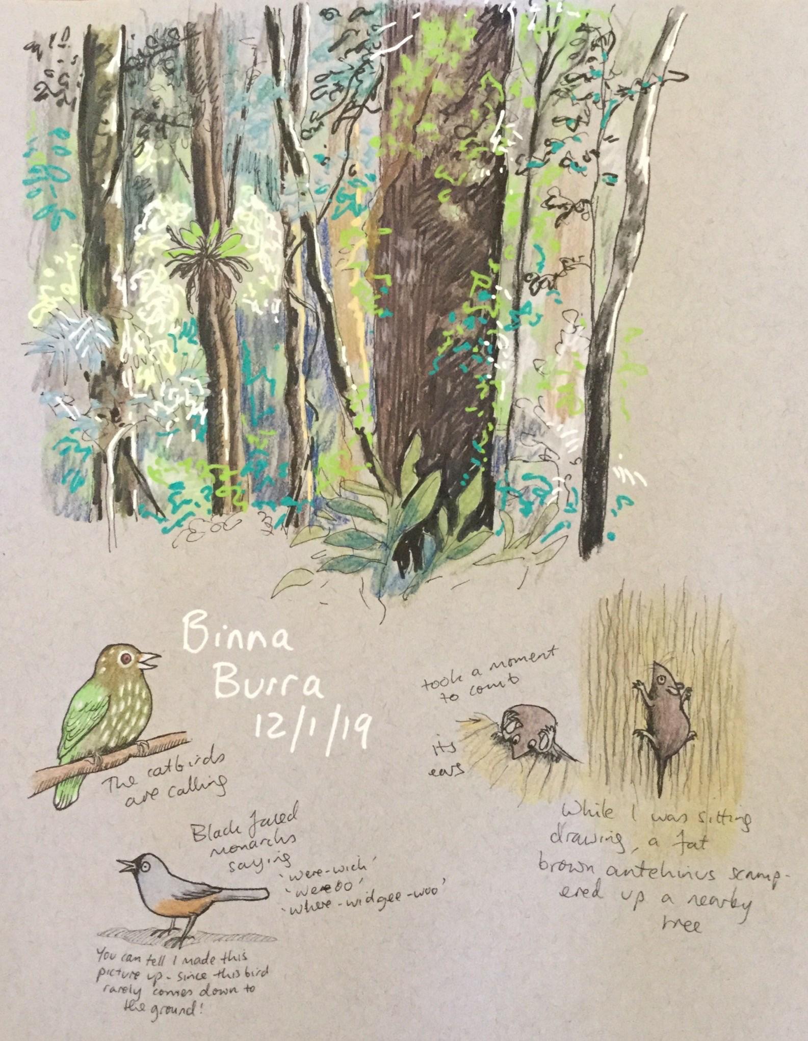 Free nature journaling workshop this Sunday