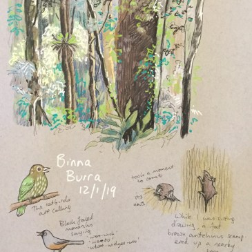 Free nature journaling workshop this Sunday