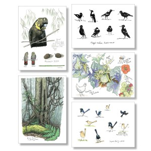 Sketchbook card collection