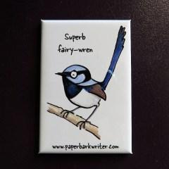 Superb Fairy-wren fridge magnet