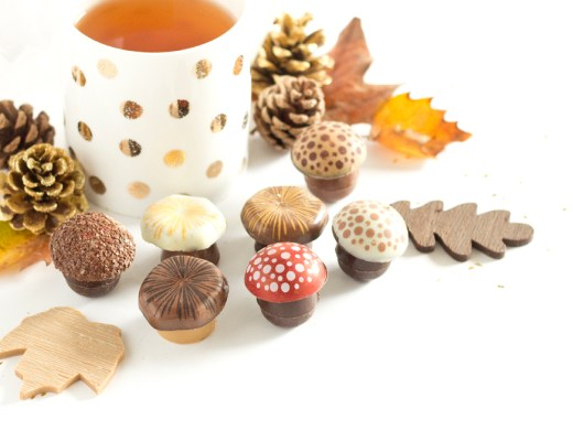 Chocolats d'Automne - Fabrice Gillotte