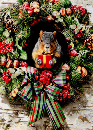 Squirrel With Gift Funny Christmas Card By Avanti Press