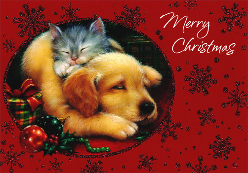 Sleeping Kitten And Puppy Cat Christmas Card By Image Arts