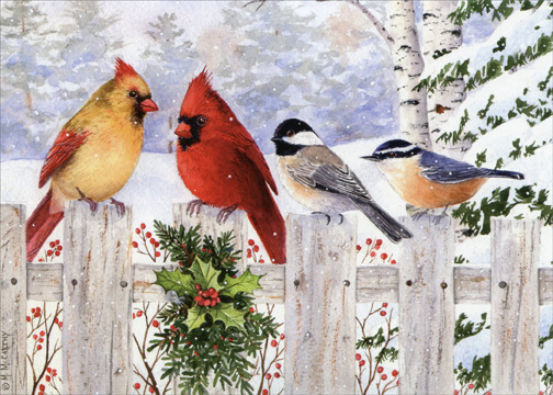 Birds On White Fence Box Of 18 Christmas Cards By LPG
