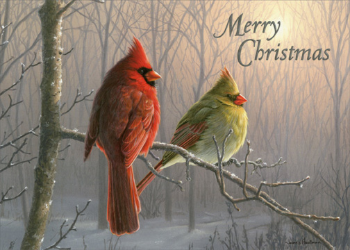 Cardinals On Branch Box Of 18 Christmas Cards By LPG Greetings